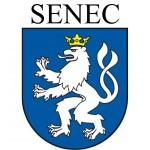 03_logo_senec