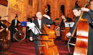 1170106-img-kontrabas-basa-kontrabasista-senec-festival-koncert-crop